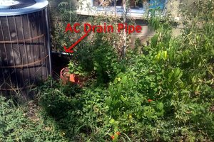 Rerouting Air Conditioner Condensation Drain to Water Garden