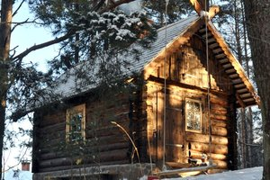 Renovated forest log cabin