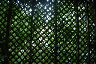 Only look at this if you  LOVE GREEN !!!  Back porch lattice work