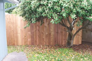 New side yard fence II